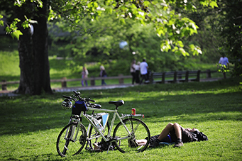 Two-Hour Central Park Bike Rental